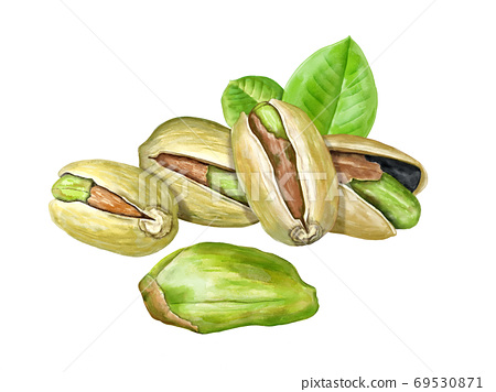 Roasted pistachio nuts 69530871