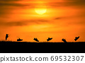 Concept design for Trail running at the sunset time 69532307
