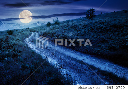 mountain road through grassy meadow at night. wonderful summer a 69540790
