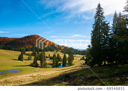 mountain landscape in autumn. forest in fall foliage on top of a 69540831