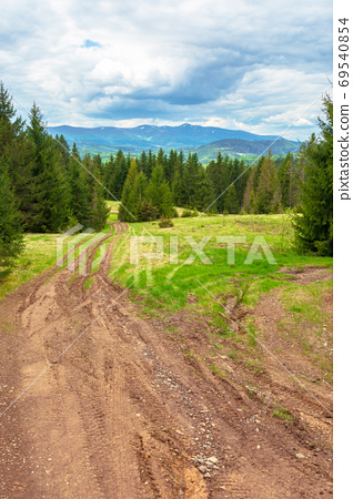 beautiful nature mountain scenery. path through forest on grassy 69540854