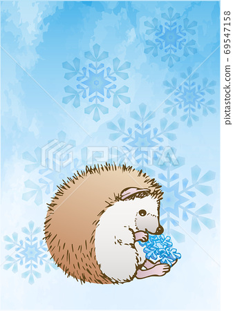 Hedgehog and snowflake 69547158