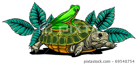 Frog and Turtle vector illustration graphics art 69548754