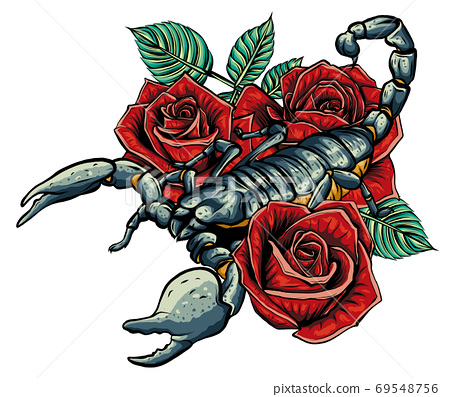 Detailed realistic scorpio in a decorative frame of roses. 69548756
