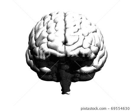 Engraving brain illustration isolated on white BG 69554630