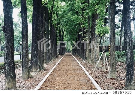 新威森林公園 69567919