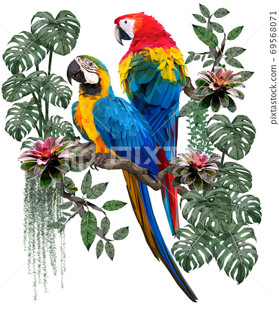 Polygonal illustration of Blue and gold and scarlet macaw birds. 69568071