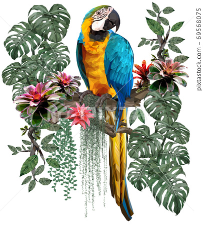 Polygonal illustration of Blue and gold macaw bird. 69568075