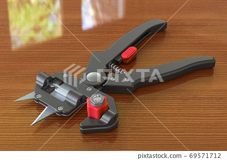 Grafting secateurs on the wooden table. 3D rendering 69571712
