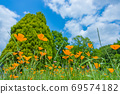 Poppies blooming against the blue sky 69574182