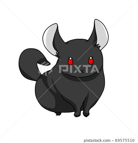 Black chinchilla 69575510
