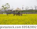 봄날 유채꽃 밭에서 69582892