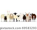 各種羊群 69583293