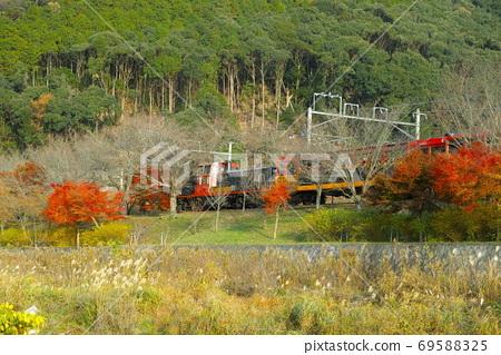 단풍 속을 달리는 트럭 열차 69588325