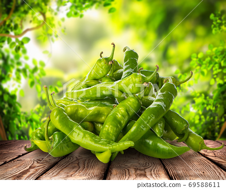 Fresh green peppers 69588611