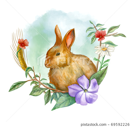 Rabbit and floral composition 69592226