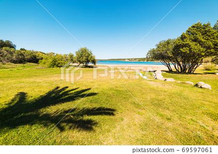 Palm shadow in Liscia di Vacca shoreline 69597061