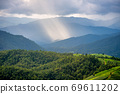 Natural landscape View of rice fields 69611202