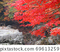 Autumn leaves, Okutsukei, Okayama prefecture 69613259