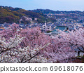Sakuraharu Sky Kenrokuen Kanazawa Cherry Blossom Viewing 69618076
