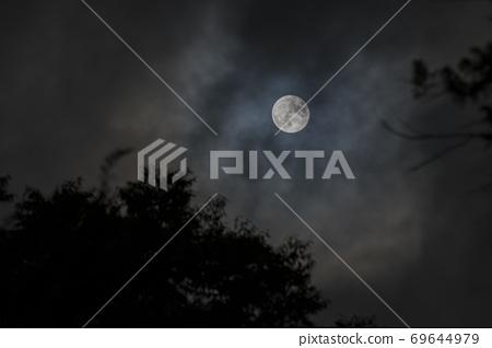 Evil Moon Night 69644979