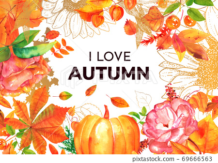 I love autumn greeting card with watercolor fall leaves, branches and flower 69666563