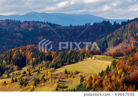 mountainous countryside landscape in autumn. beautiful scenery with forested rolling hills in fall colours. carpathian rural landscape 69667698