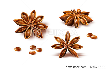 Anise stars isolated on white background 69678366
