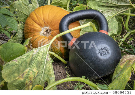 heavy kettlebell and pumpkin 69694555