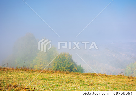 misty morning autumn scenery. mountain landscape with trees in colorful foliage on the grassy meadow 69709964