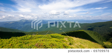 hills and valley of summer mountain landscape. sunny weather with clouds on the blue sky. beautiful scenery of chornohora ridge in dappled light 69709978