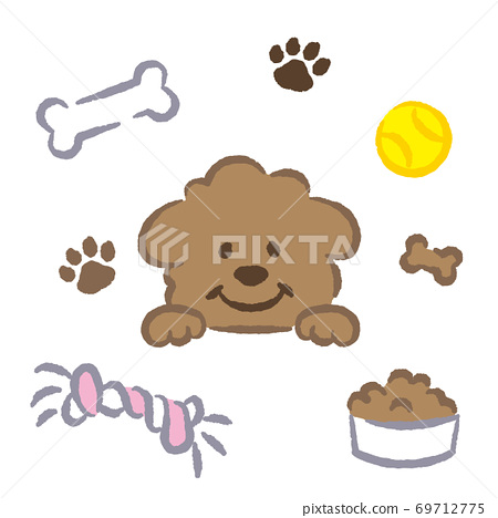 Toy poodle illustration 69712775