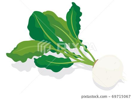 蔬菜_kabu 69715067