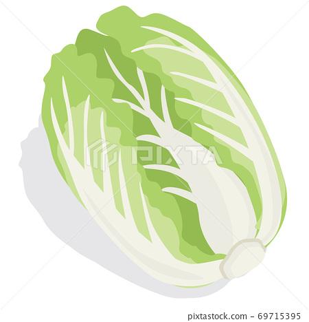蔬菜 _ 69715395