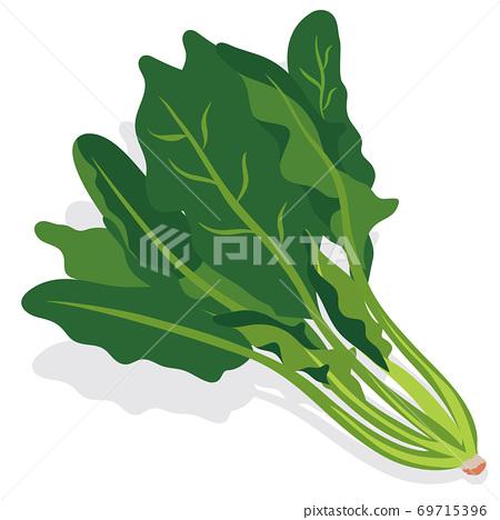蔬菜_菠菜 69715396