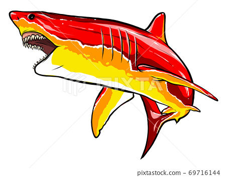 shark red angry vector illustration graphics art 69716144