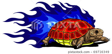 vector Illustration of Sulcata land tortoise design 69716349