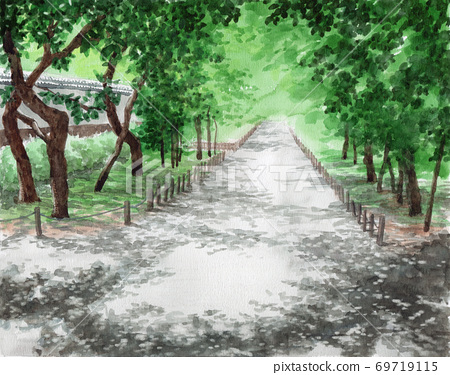 Early summer plum grove painted in watercolor 69719115