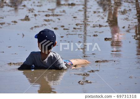 논에서 진흙 놀이 69731318