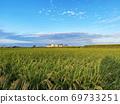 Inaho rice autumn sky sky countryside autumn 69733251