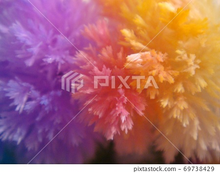Purple pink yellow crystals 69738429