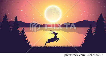 jumping deer in the nature by the lake at moon light 69748283