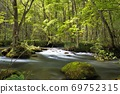 Oirase Gorge, Sunbeams, Sanran Flow 69752315