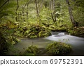 Oirase Gorge, a mountain stream in the sunlight through the trees, a stream of three turbulences 69752391