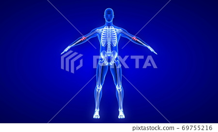 Elbow Pain. Blue Human Anatomy Body 3D Scan render on blue background 69755216