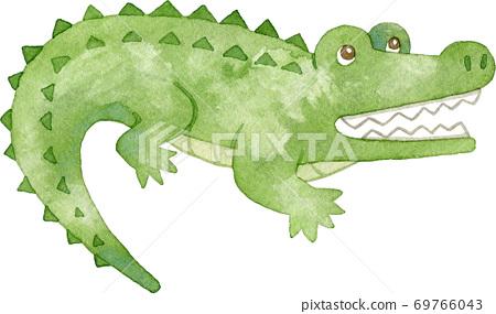 張開嘴的鱷魚(一隻) 69766043