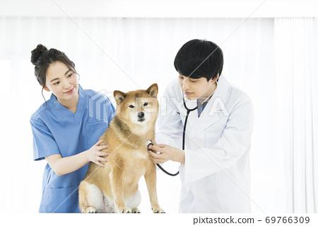 獸醫診所聽力設備 69766309