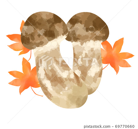 Illustration of matsutake mushroom, a high-class food that you want to eat in the fall of appetite 69770660