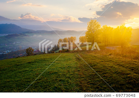 stunning rural landscape. foggy scenery at sunrise in autumn season. trees on mountain hills in colorful foliage. village in the valley. panoramic view 69773048