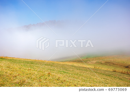 misty morning autumn scenery. mountain landscape with trees in colorful foliage on the grassy meadow 69773069